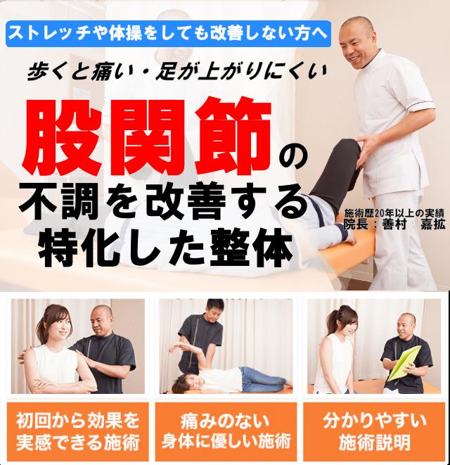 変形性股関節症が無痛整体で改善 再発 しにくい体になれるのか